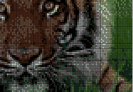 Дикие кошки:Пума, Тигр, Барс снежный