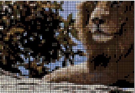 Дикие звери : Лев , Гепард , Волк
