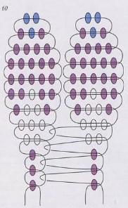 Хионодокса