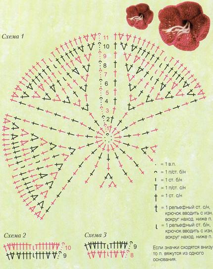 Гладиолус крючком