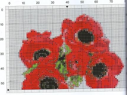 Анемоны и цветы земляники